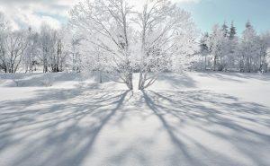 厳冬の雪山で自然の存在感に圧倒される~寒さと戯れて冬を遊ぶ~