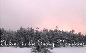 【遭難注意】東京から日帰り雪山ハイキング。冬だからこそ見える絶景!