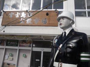 【毎年恒例の沖縄宮古島旅行】暖かいのは気候だけではなく人もです!!