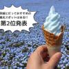 【茨城名所案内】青の絶景『国営ひたち海浜公園・ネモフィラの丘』!!