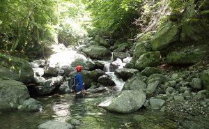 自らの感覚を研ぎ澄まし人の踏跡無き原生の森へ【沢登り&源流釣行】