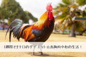 【鳥胸肉ダイエット】おいしい鳥胸肉を食べて1週間で2キロも痩せた!!