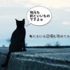 【舘山白浜】おもしろい『道の駅』発見!寄り道多めの気ままな一人旅!!