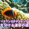 綺麗な海を満喫!【ロケットマンの有給休暇~沖縄への帰郷編3日目~】