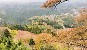【花見?】一目千本の桜が咲き乱れているはずの奈良・吉野へハイキング