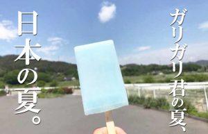 【夏と私とガリガリ君】攻めの姿勢を貫き通すガリガリ君ランキング!!
