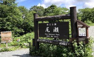 【夏は尾瀬!】標高2,228mの至仏山と雲上の花畑ハイキング