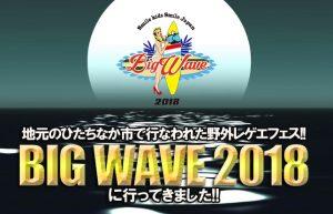 【平成最後のBIG WAVE!!】最初から最後までテンションMAXで踊ってきました♪