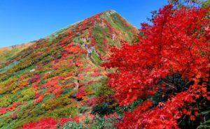 【谷川岳で紅葉ハイキング】岩壁と紅葉のコントラストが美しい雄大な風景を一望