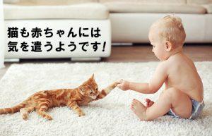 【子供もだいぶ大きくなりました】抱っこがだんだん大変になってます!