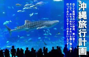 【絶対に行くぞ!沖縄旅行計画始動!!】その前にまずは痩せなきゃ…!!