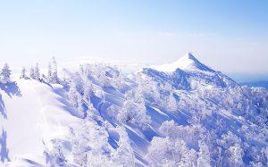 【八ヶ岳/上州武尊山/四阿山】東京から気軽に行ける雪遊びスポット紹介