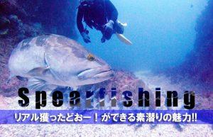 【夏の遊び第1弾@素潜り】美しい海を泳ぐ魚に狙いを定めてハンティング!