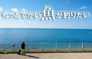 【釣りにハマってます】ヒットした瞬間や釣れた時の喜びはホントに最高!!