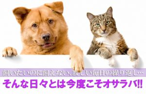 【そうだ、ペットを飼おう!】幼少期から現在に至るまで温め続けてきた夢