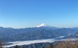 【令和最初の初詣】大人気の奥高尾縦走路「陣馬山」→「高尾山」から薬王院へ